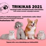 TRIKIKAS 2021 VÕITJAD!